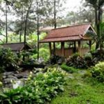 paket outbound 2d1n lembah safari resort 2
